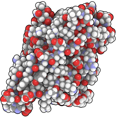 allergen: Chemical structure of a Bet V 1 molecule, the major birch pollen allergen. Stock Photo