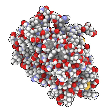 proteomics: Chemical structure of Interferon alfa-a2. Pegylated versions of this molecule are used to treat hepatitis C infections.