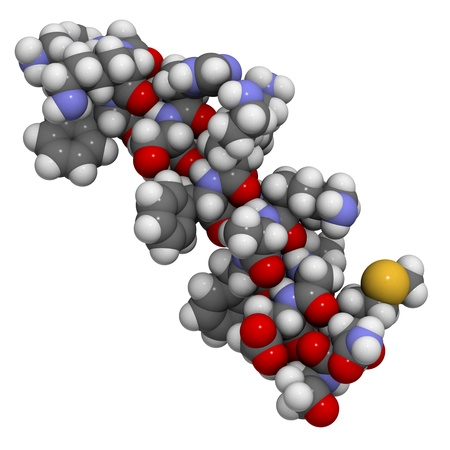 proteomics: Chemical structure of magainin 2, an antimicrobial peptide found in frog skin that protects against wound infections.