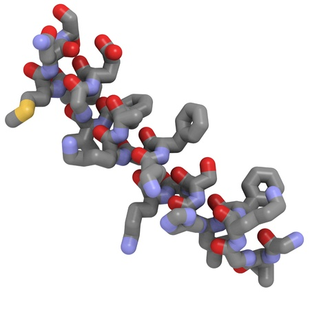 laevis: Chemical structure of magainin 2, an antimicrobial peptide found in frog skin that protects against wound infections.