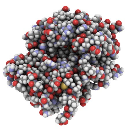 proteomics: Chemical structure of a vaccine against ricin poisoning.