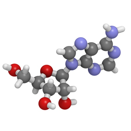 adenine: Chemical structure of a molecule of adenosine (A, ADO). This is one of the four building blocks of RNA. Adenosine also acts as an inhibitory neurotransmitter.