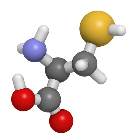 disulfide: Chemical structure of a molecule of L-Cysteine (Cys, C). Cysteine is a semi-essential, sulfur-containing amino acid. It forms disulfide bridges and is thus essential for the correct folding of proteins.