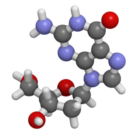 monomer: Estructura qu�mica de una mol�cula de desoxiguanosina (dG, G), uno de los cuatro bloques de construcci�n de ADN.