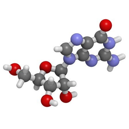nucleoside: Chemical structure of a molecule of Guanosine (G). This is one of the four building blocks of RNA.