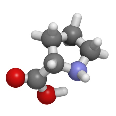 molekuul: Chemical structure of a molecule of L-Proline (Pro, P). Proline is often found in turns in proteins.