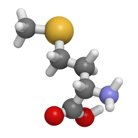molekuul: Chemical structure of a molecule of L-selenomethionine. This is a common and natural food source of the element selenium. Stock Photo