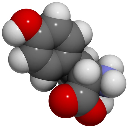 molekuul: Chemical structure of a molecule of L-Tyrosine (Tyr, Y). Tyrosine is an aromatic amino acid containing a phenol group. It is also a precursor of dopamine, thyroxine, epinephrineadrenaline, noradrenaline and melanin.
