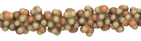 celulosa: detalle de una cadena de celulosa, el principal constituyente de algod�n, madera y papel.