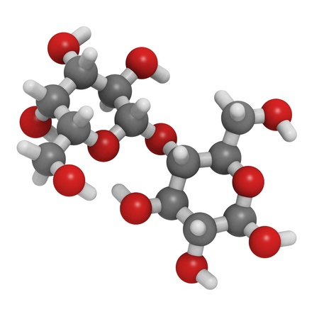 disaccharide: Chemical structure of a molecule of lactose, the disaccharide sugar found in milk.