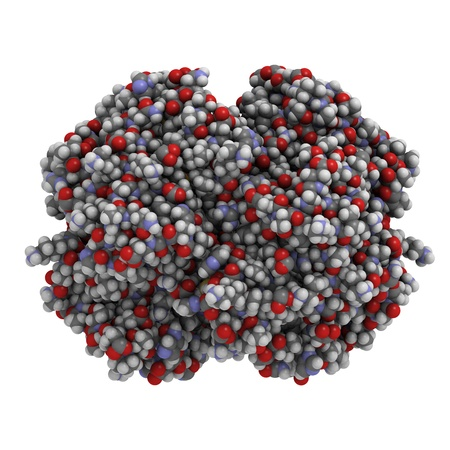 haemoglobin: Chemical structure of hemoglobin (haemoglobin, Hb). Hb is found in red blood cells and makes oxygen transport by blood possible.