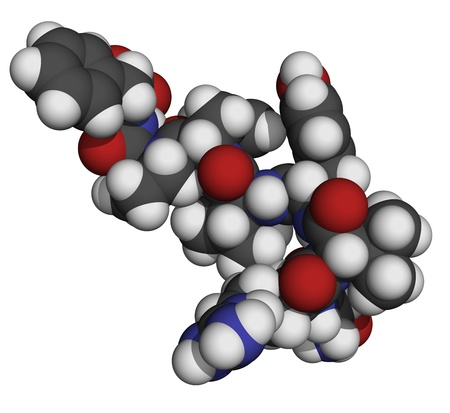 converting: Chemical structure of a molecule of angiotensin II (AII) peptide, a peptide hormone that has a number of physiological effects and plays a role in blood pressure regulation.