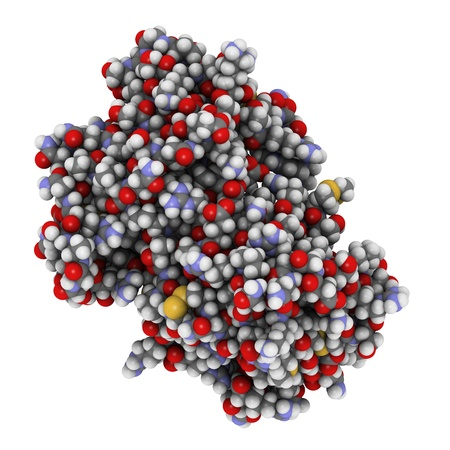 myeloma: Chemical structure of a cyclic ADP ribose hydrolase (CD38) protein. CD38 is an enzyme present on the cell surface of many immune cells and it is a prognostic biomarker used in leukemia diagnosis.  Stock Photo