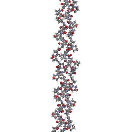 Chemische Struktur von einer Kollagen-Modell Protein. Collagen nimmt eine charakteristische Tripelhelixstruktur. Kollagen ist ein Hauptbestandteil vieler Gewebe, wie Haut, Knochen und Knorpel. Kollagen ist Filler in der Behandlung von Falten und Ski verwendet Standard-Bild - 16083382