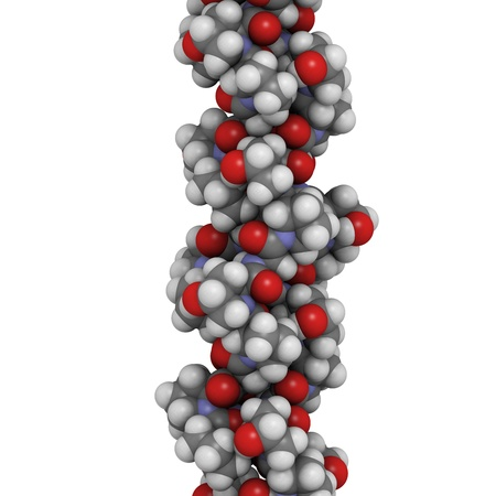 proline: Chemical structure of a collagen model protein. Collagen adopts a characteristic triple helix structure. Collagen is a major component of many tissues, including skin, bone and cartilage. Collagen is used dermal filler in the treatment of wrinkles and skin ageing.