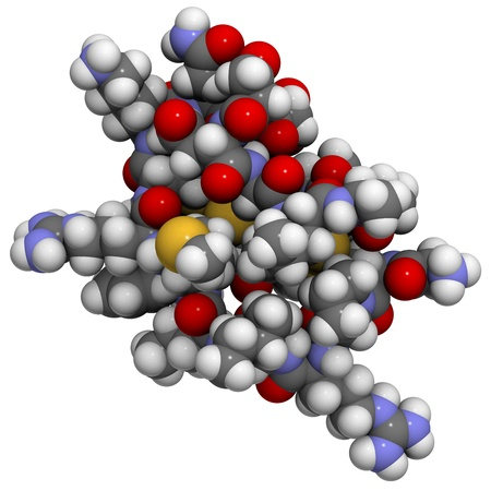 peptide: Chemical structure of an Ecballium elaterium (exploding cucumber) trypsin inhibitor (EETI-II), an example of a knottin peptide.