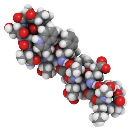 mellitus: Struttura chimica di una molecola di exendin-4 (exenatide). Questo peptide, originariamente isolato dalla saliva Gila monster, � un glucagone-like peptide-1 agonista utilizzato per il trattamento del diabete mellito di tipo II