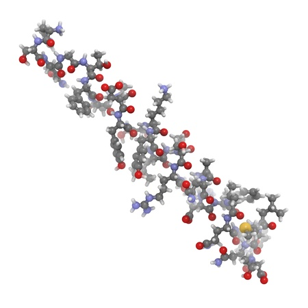 islets: Chemical structure of a molecule of glucagon. Glucagon is a peptide hormone, produced in the pancreas, that has the opposite effect of insulin.