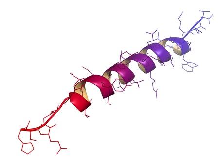 trzustka: Chemiczna budowa cząsteczki glukagon. Glukagon jest hormonem peptydowym, produkowane w trzustce, które ma odwrotny wpływ insuliny. Zdjęcie Seryjne