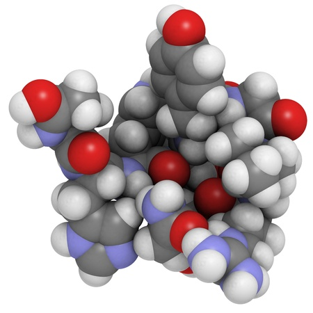 peptide: Chemical structure of a molecule of gonadotropin-releasing hormone (GnRH, Luteinizing-hormone-releasing hormone, LHRH, luliberin). GnRH is a peptide hormone that causes release of follicle-stimulating hormone (FSH) and luteinizing hormone (LH) from the anterior pituitary.