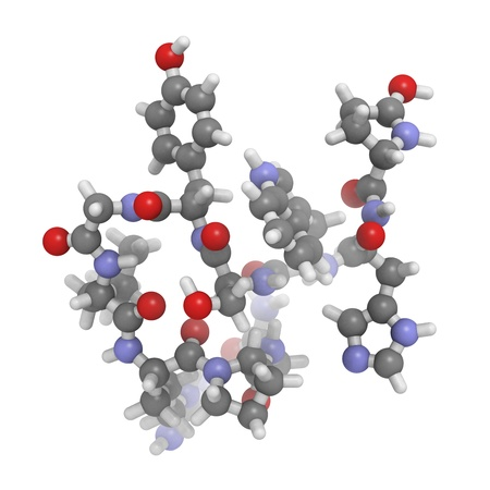 hormone: Chemical structure of a molecule of gonadotropin-releasing hormone (GnRH, Luteinizing-hormone-releasing hormone, LHRH, luliberin). GnRH is a peptide hormone that causes release of follicle-stimulating hormone (FSH) and luteinizing hormone (LH) from the anterior pituitary.