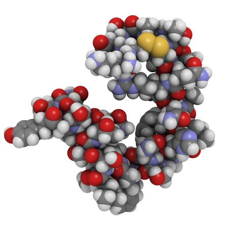 polypeptide: Chemical structure of a molecule of amylin (Islet Amyloid PolyPeptide, IAPP). IAPP is a peptide hormone that plays a role in regulating blood glucose levels.