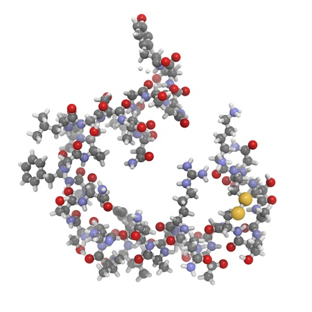 regulating: Chemical structure of a molecule of amylin (Islet Amyloid PolyPeptide, IAPP). IAPP is a peptide hormone that plays a role in regulating blood glucose levels.