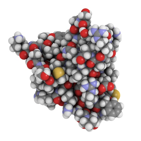 believed: Chemical structure of a molecule of Insulin-like growth factor (IGF-1, somatomedin C) hormone. In humans, IGF-1 stimulates growth and mediates the effects of growth hormone. IGF-1 is also believed to play an important role in ageing.