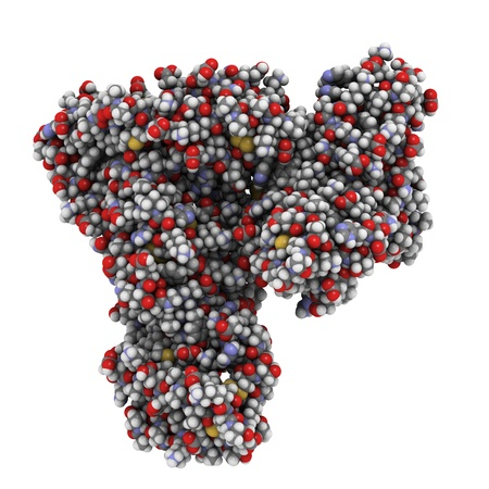Chemische structuur van humaan serum albumine (HSA). HSA is het meest overvloedige eiwit in bloedplasma en een belangrijk transporteiwit.