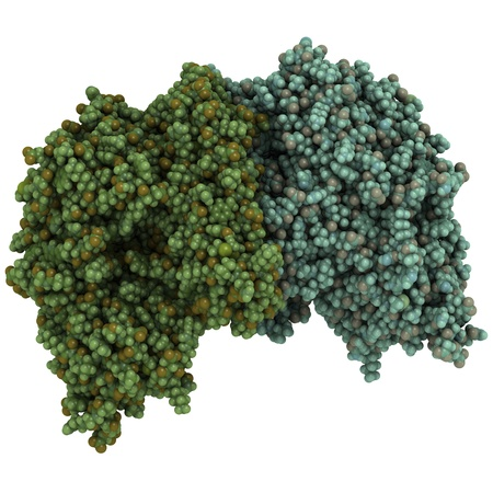 glutamate: Chemical structure of prostate-specific membrane antigen (PSMA, Glutamate carboxypeptidase II). Stock Photo