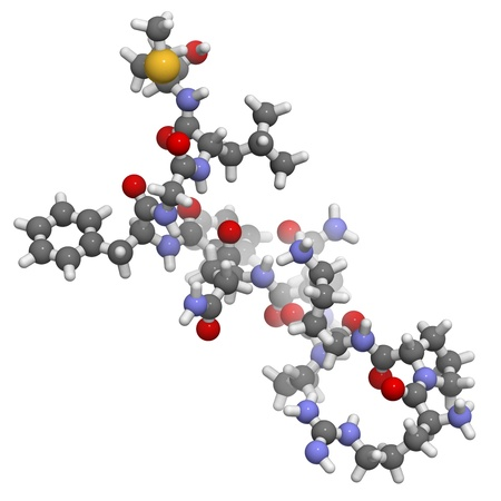 Chemical structure of substance P. This neuropeptide plays a role in pain sensation and inflammation. Stock Photo - 16083413