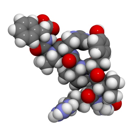 kinase: Chemical structure of a molecule of angiotensin II (AII) peptide, a peptide hormone that has a number of physiological effects and plays a role in blood pressure regulation.