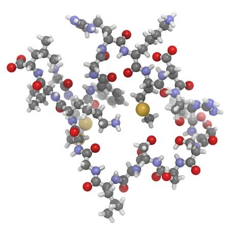 insuficiencia cardiaca: Estructura qu�mica de una mol�cula del cerebro o B-p�ptido natriur�tico tipo B (BNP). Una disminuci�n en los niveles de este biomarcador indica insuficiencia card�aca. BNP recombinante se usa para tratar la insuficiencia card�aca descompensada.