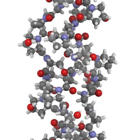 Chemische structuur van collageen modeleiwit. Collageen neemt een karakteristieke triple helix structuur. Collageen is een belangrijke component van veel weefsels waaronder huid, bot en kraakbeen. Collageen wordt huidvuller bij de behandeling van rimpels en ski