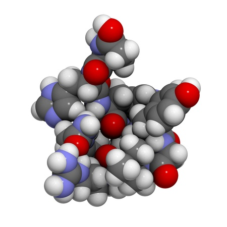 protein structure: Chemical structure of a molecule of gonadotropin-releasing hormone (GnRH, Luteinizing-hormone-releasing hormone, LHRH, luliberin). GnRH is a peptide hormone that causes release of follicle-stimulating hormone (FSH) and luteinizing hormone (LH) from the an