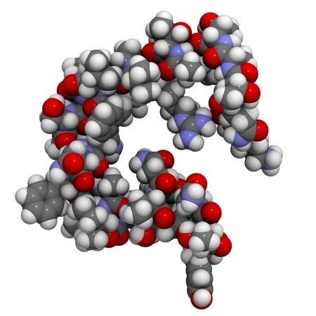 peptide: Chemical structure of a molecule of amylin (Islet Amyloid PolyPeptide, IAPP). IAPP is a peptide hormone that plays a role in regulating blood glucose levels.