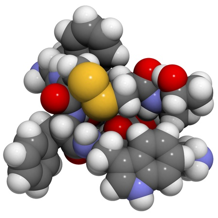 secretion: Chemical structure of a molecule of octreotide. Octreotide is a mimic of somatostatin. It inhibits the secretion of a number of hormones, including growth hormone, glucagon and insulin.