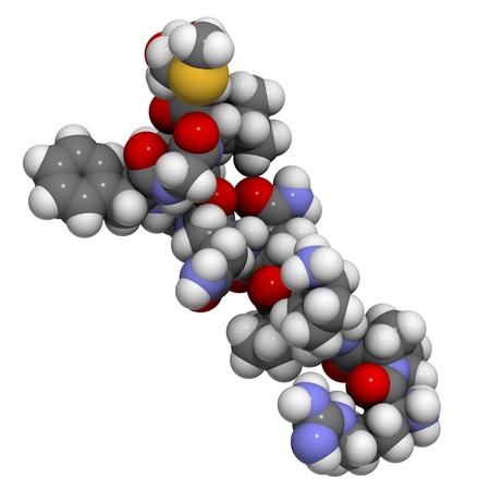 Chemical structure of substance P. This neuropeptide plays a role in pain sensation and inflammation. Stock Photo - 16647697