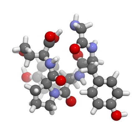 morphine: Gluten exorphin A5 molecule, chemical structure. This peptide is a wheat gluten digestion fragment that has morphine like (opioid) properties.
