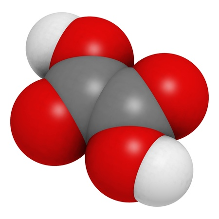 Oxalic acid molecule. Its salt, calcium oxalate, is the main component of most kidney stones. It is oxalic acid that makes rhubarb taste sour. Stock Photo - 17236555