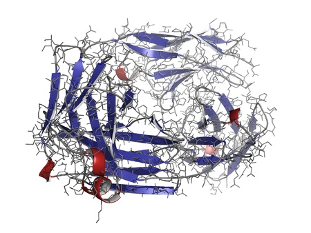 autoimmune: Alemtuzumab Fab fragment computer model. Alemtuzumab is a humanized monoclonal antibody that binds the CD52 protein and is used in the treatment of cancer and auto-immune disease.