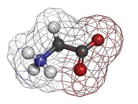 glycine: Glycine (Gly, G) amino acid, molecular model. Amino acids are the building blocks of all proteins. Atoms are represented as spheres with conventional color coding: hydrogen (white), carbon (grey), oxygen (red), nitrogen (blue)