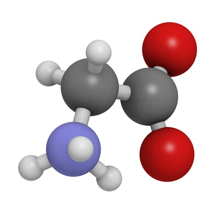 Glycine (Gly, G) amino acid, molecular model. Amino acids are the building blocks of all proteins. Atoms are represented as spheres with conventional color coding: hydrogen (white), carbon (grey), oxygen (red), nitrogen (blue) Stock Photo - 18016524