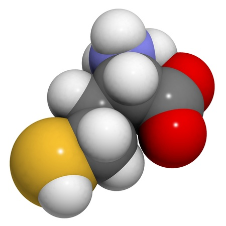 biomarker: Homocysteine (Hcy) amino acid, molecular model. Elevated blood homocysteine levels are associated with cardiovascular disease. Atoms are represented as spheres with conventional color coding: hydrogen (white), carbon (grey), oxygen (red), nitrogen (blue), Stock Photo
