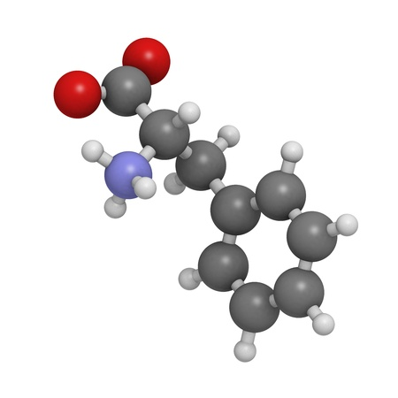 biosynthesis: Phenylalanine (Phe, F) amino acid, molecular model. Amino acids are the building blocks of all proteins. Atoms are represented as spheres with conventional color coding: hydrogen (white), carbon (grey), oxygen (red), nitrogen (blue) Stock Photo