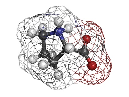 synthesis: Proilne (Pro, P) amino acid, molecular model. Amino acids are the building blocks of all proteins. Atoms are represented as spheres with conventional color coding: hydrogen (white), carbon (grey), oxygen (red), nitrogen (blue) Stock Photo