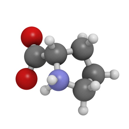 Proilne (Pro, P) amino acid, molecular model. Amino acids are the building blocks of all proteins. Atoms are represented as spheres with conventional color coding: hydrogen (white), carbon (grey), oxygen (red), nitrogen (blue) Stock Photo