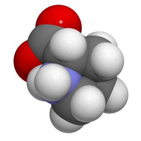 Proilne (Pro, P) amino acid, molecular model. Amino acids are the building blocks of all proteins. Atoms are represented as spheres with conventional color coding: hydrogen (white), carbon (grey), oxygen (red), nitrogen (blue) Stock Photo - 18016552