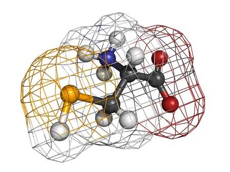 selenium: Selenocysteine (Sec, U) amino acid, molecular model. Amino acids are the building blocks of all proteins. Atoms are represented as spheres with conventional color coding: hydrogen (white), carbon (grey), oxygen (red), nitrogen (blue), selenium (orange) Stock Photo