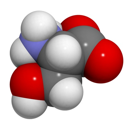 serine: Serine (Ser, S) amino acid, molecular model. Amino acids are the building blocks of all proteins. Atoms are represented as spheres with conventional color coding: hydrogen (white), carbon (grey), oxygen (red), nitrogen (blue) Stock Photo